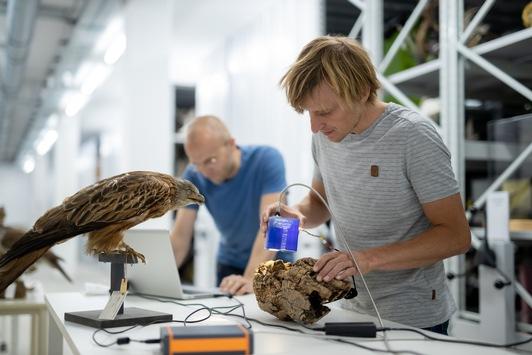 Universität UMIT TIROL: Forschung zum Schutz von Vögeln und Fledermäusen