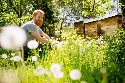 Raus in den Garten: Wirksame Therapie für Corona-Zeiten / Ein Gartencoach verrät, wie wir in der Natur zur Ruhe kommen und in unsicheren Zeiten Vertrauen schöpfen können