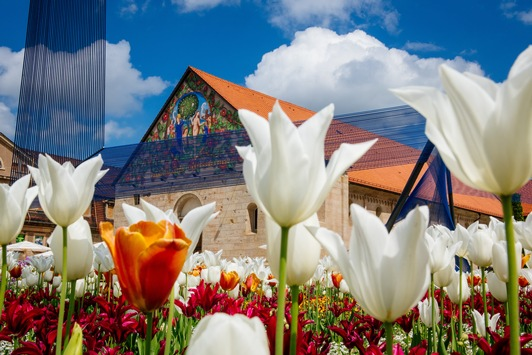 Sommerlaune auf der BUGA- in Erfurt wird auf 18.000 m² umgepflanzt