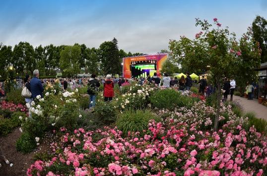 SWR Sommerfestival 2021 in Zweibrücken – Der Kartenvorverkauf beginnt