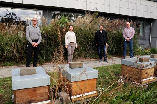 Für nachhaltiges Engagement ausgezeichnet: LOTTO Niedersachsen überzeugt bei ÖKOPROFIT