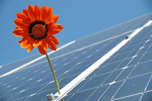 Photovoltaik Echem, Hohnstorf, Artlenburg, Barum