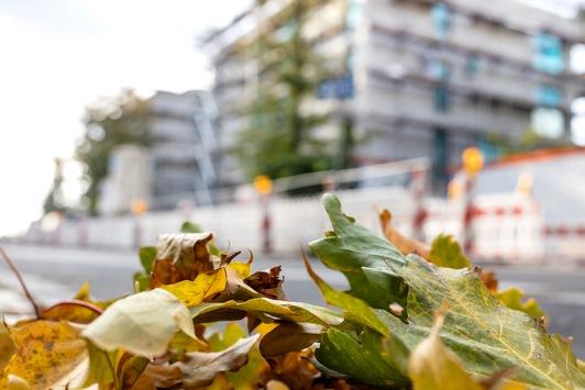 Sicher arbeiten bei Herbstwetter: BG BAU gibt Tipps