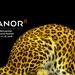 Manor est à nouveau partenaire principal du «Locarno Festival» en 2018. Texte complémentaire par ots et sur ...